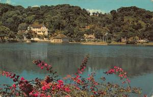 Ceylon Kandy Temple of the Tooth Across the Lake Postcard