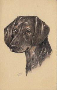 AS: Portrait of Dachshund, Basset, Dog, 1900-10s