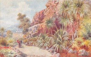 Rock Walk Torquay Devon England UK 1910c Tuck Oilette postcard