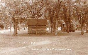 Minnesota Madelia Park Scene With Cabins Real Photo