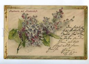 240695 LILAC Flowers by C. KLEIN Vintage SCHMIDT 1902 year PC