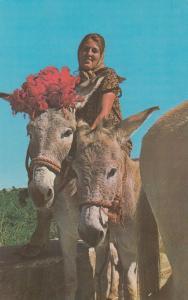 U.S. VIRGIN ISLANDS, Grettings from St. Croix, Woman with Donkeys, 1940-60s