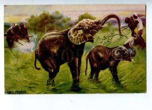 157035 HUNT Hunter ELEPHANT by Ludwig FROMME Vintage PC