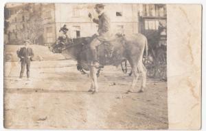 Social History; Amusing French Image Of Edwardian Man Riding Bull PPC Unposted