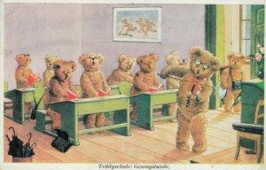Teddy Bear School , Classroom #2 , 20-40s