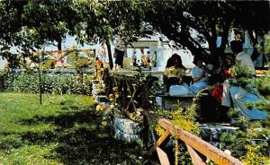 Turkey The Camlica Tee, Gardens Istanbul