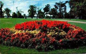 Massachusetts New Bedford Flower Bed At Hazelwood Park