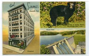 Hotel St James Black Bear Norris Dam Knoxville Tennessee linen postcard