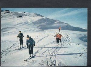 Sports Postcard - Skiing - Ski Slopes Near Carrbridge, Scotland    T2235