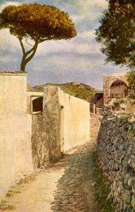 Italy - Capri. The Road to Tiberio