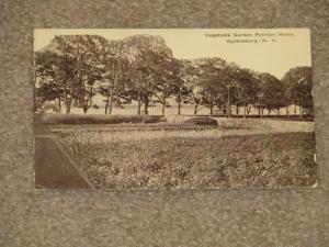 Vegetable Garden, Pythian Home, Ogdensburg, N.Y., unused vintage card