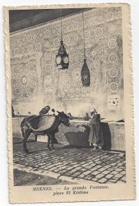MOROCCO, Africa, 1900-1910s; Arabs & Donkey, La grande Fontaine place El Kedime