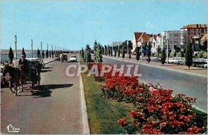 Postcard Moderne Vichy (Allier) Avenue de Lattre de Tassigny hitch