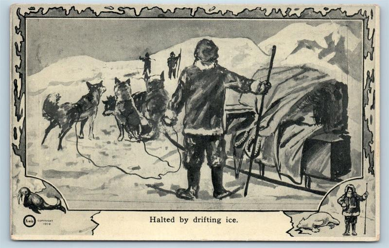 Postcard North Pole Explorer Frederick Cook Halted By Drifting Ice 1909 M2