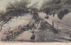 SANDOWN, Isle of Wright, England, United Kingdom; On the Cliffs, 00-10s