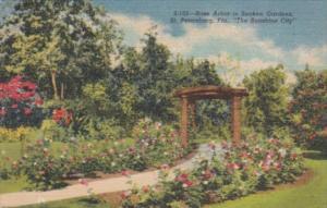 Florida St Petersburg Rose Arbor In Sunken Gardens Curteich