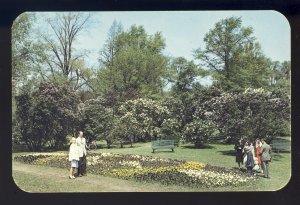 Rochester, New York/NY Postcard, Lilac Time Festival In Beautiful Highland Park