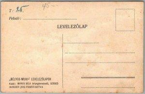 Vintage Hungarian STAMP ART Postcard RED DEVIL w/ German Stamps c1910s UNUSED