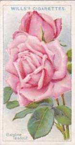Wills Vintage Cigarette Card Roses A Series 1912 No 28 Caroline Testout