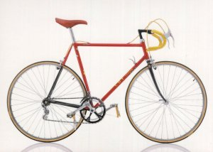 CBT Italia Champions 1985 Bicycle Italy Cycle Bike Postcard