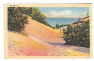 Landscape Sand Dunes Vintage Curteich Postcard
