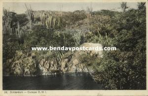 curacao, N.W.I., Dokterstuin (1930s) Sunny Isle L. Reck 28