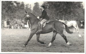 Horse Sports Hippique Real Photo Postcard 03.91