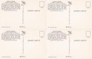 0165 Grabbag Auction 4 Religion Postcards Starting At .99