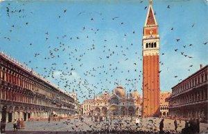 Venezia Pidgeons 1965