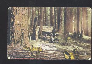 CAMPING AMONG OREGON BIG TREES FOREST VINTAGE POSTCARD