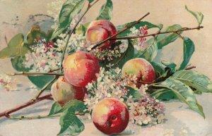 STILL LIFE, PU-1909; Peaches