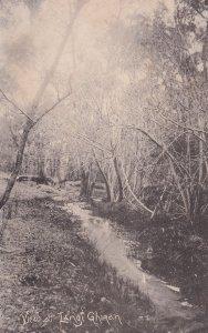 Langi Ghiran Victoria Australia Antique 1905 Postcard