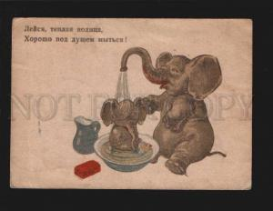 076751 Russian ELEPHANT Family as Shower Vintage color Rare PC