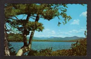ME View of Wilson Lake in WILTON MAINE Postcard PC
