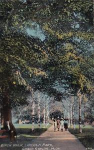 Michigan Grand Rapids Birch Walk In Lincoln Park