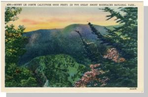 Smoky Mountains Nat'l Park,Postcard,NC/TN,Mt Le Conte,Nr Mnt
