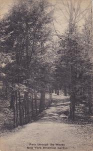 Path through the Woods, New York Botanical Gardens, New York, PU-1935