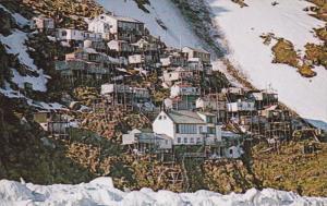 Eskimo village of UKIVOK, King Island , Alaska , 50-60s