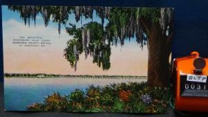 STD Vintage Mississippi Gulf Coast Harrison County Bridge Biloxi MS Unposted