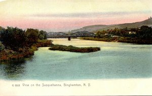 New York Binghamton View On The Susquehanna River Rotograph