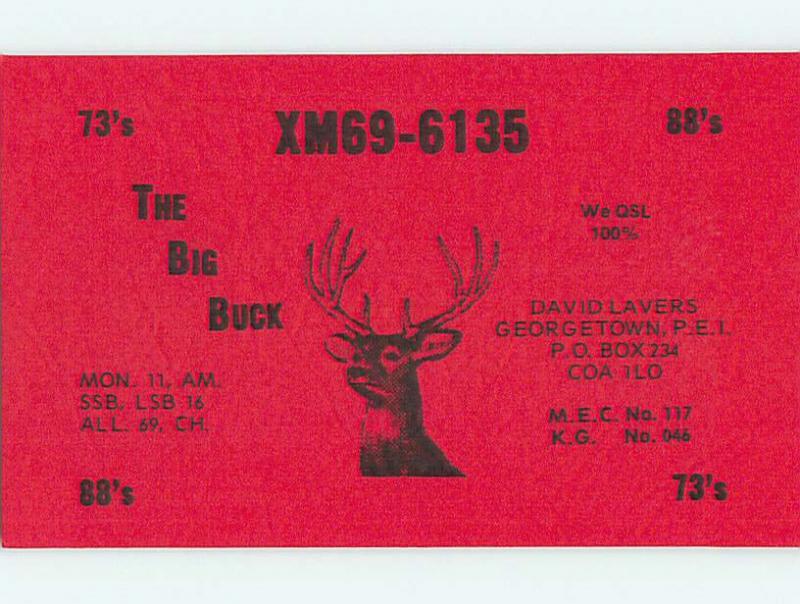 Deer - QSL HAM RADIO CARD Georgetown Prince Edward Island PE Canada t1221