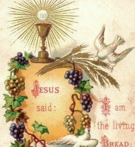 1890s Religious L. Turgis & Fils Paris Jesus Doves Grapes P222