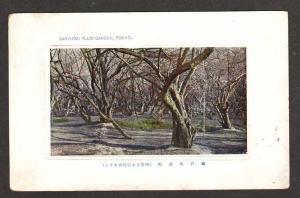 View of GARYUBAI Plum Garden TOKYO JAPAN Postcard PC