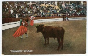 Challenging The Bull