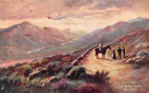 Ireland Killarney, The Black Valley, Horse, Landscape, Paysage