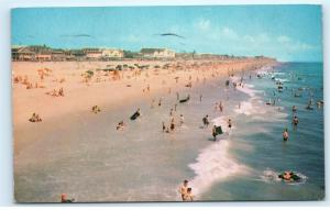 *1960 Beach Scene Surf Swimming Ocean City Maryland MD Vintage Postcard C44