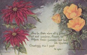 California Poppy & Poinsettia Flowers , 1921