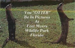 You Otter Be In Pictures at Fort Meyers Wildlife Park FL