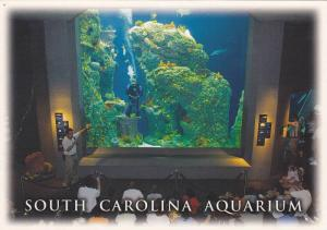 The Great Ocean Tank South Carolina Aquarium,  Charleston Harbor,  South Caro...