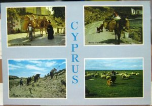 Cyprus Multi-view - unposted